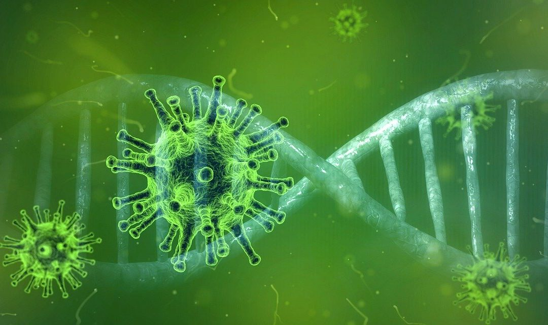 Hinweise zur Corona Virus Situation